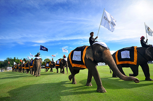 The King's Cup Elephant Polo Tournament