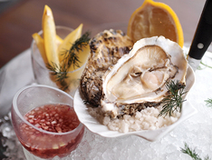 French oyster showcase